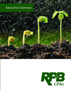 RPB Brochure